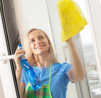 Home Cleaning Service North Shore